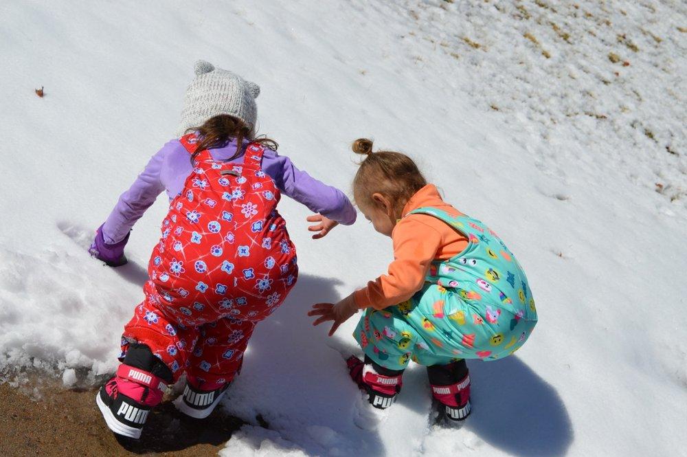 March snow 8.jpg