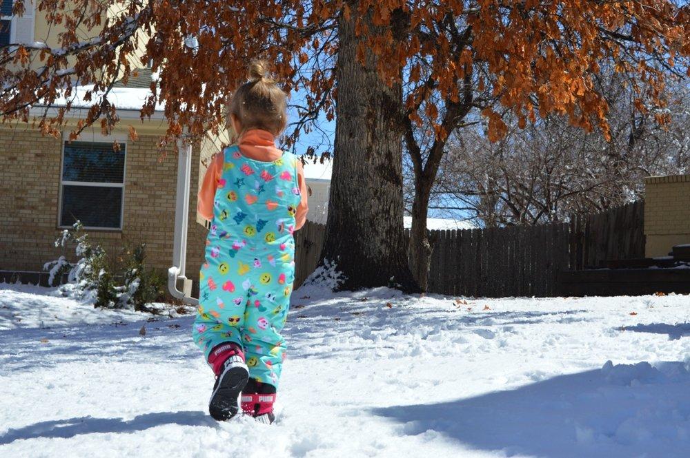 March snow 16.jpg