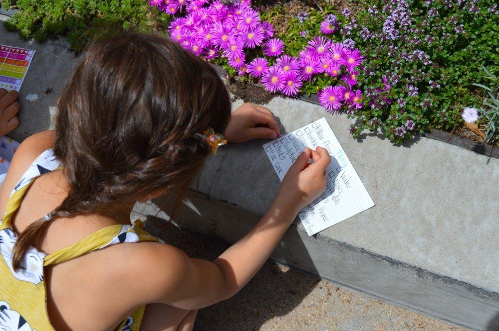 Denver Botanic Gardens 1.jpg