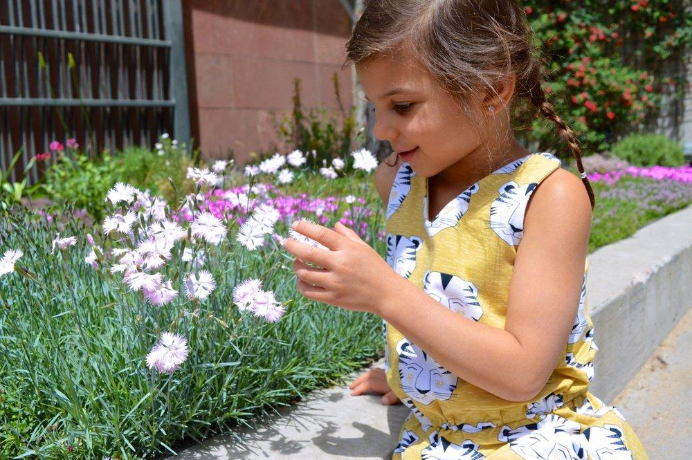 Denver Botanic Gardens 2.jpg