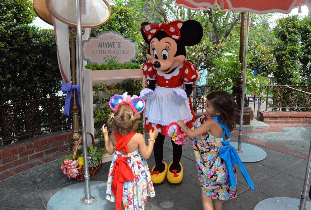 Disneyland July 2018 21.jpg