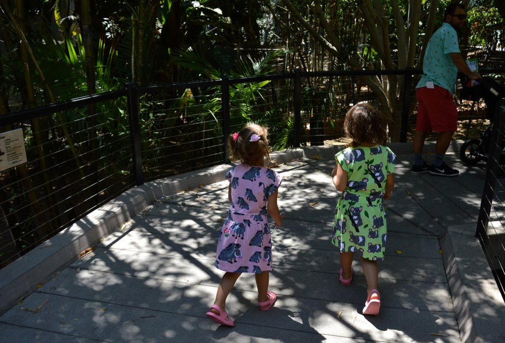 San Diego Zoo July 2018 4.jpg