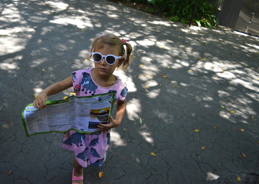 San Diego Zoo July 2018 7.jpg