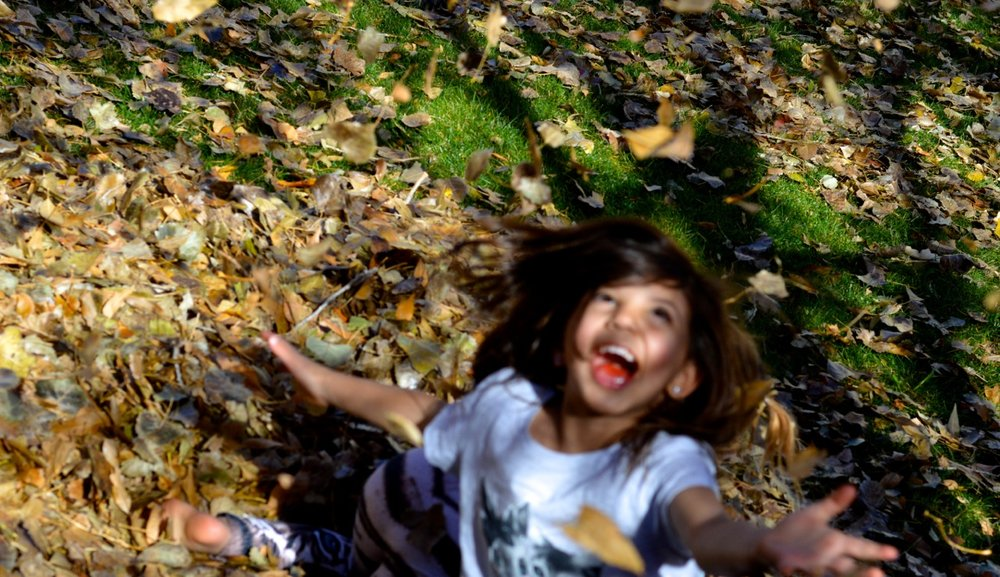 Jumping in Leaves 2018 27.jpg