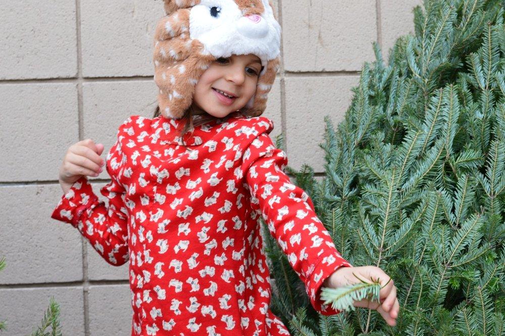 Christmas Tree Picking 2018 4.jpg