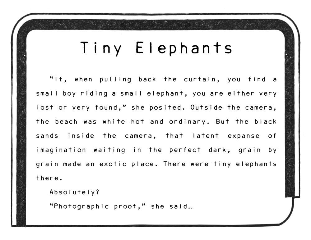 elephanttitle.jpg