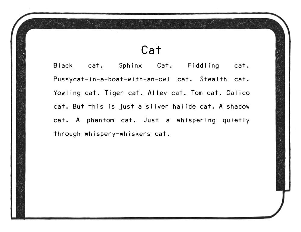 cat title.jpg