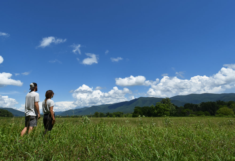 Taking it all in at Cades Cove