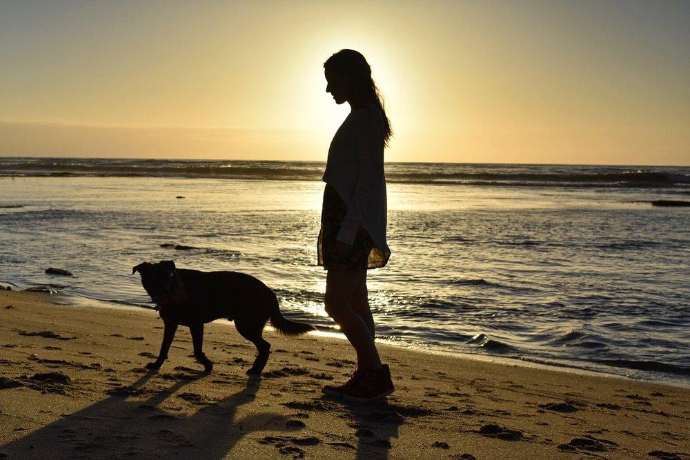 Roscoe and Cass on No Surf Beach at Sunset Cliffs