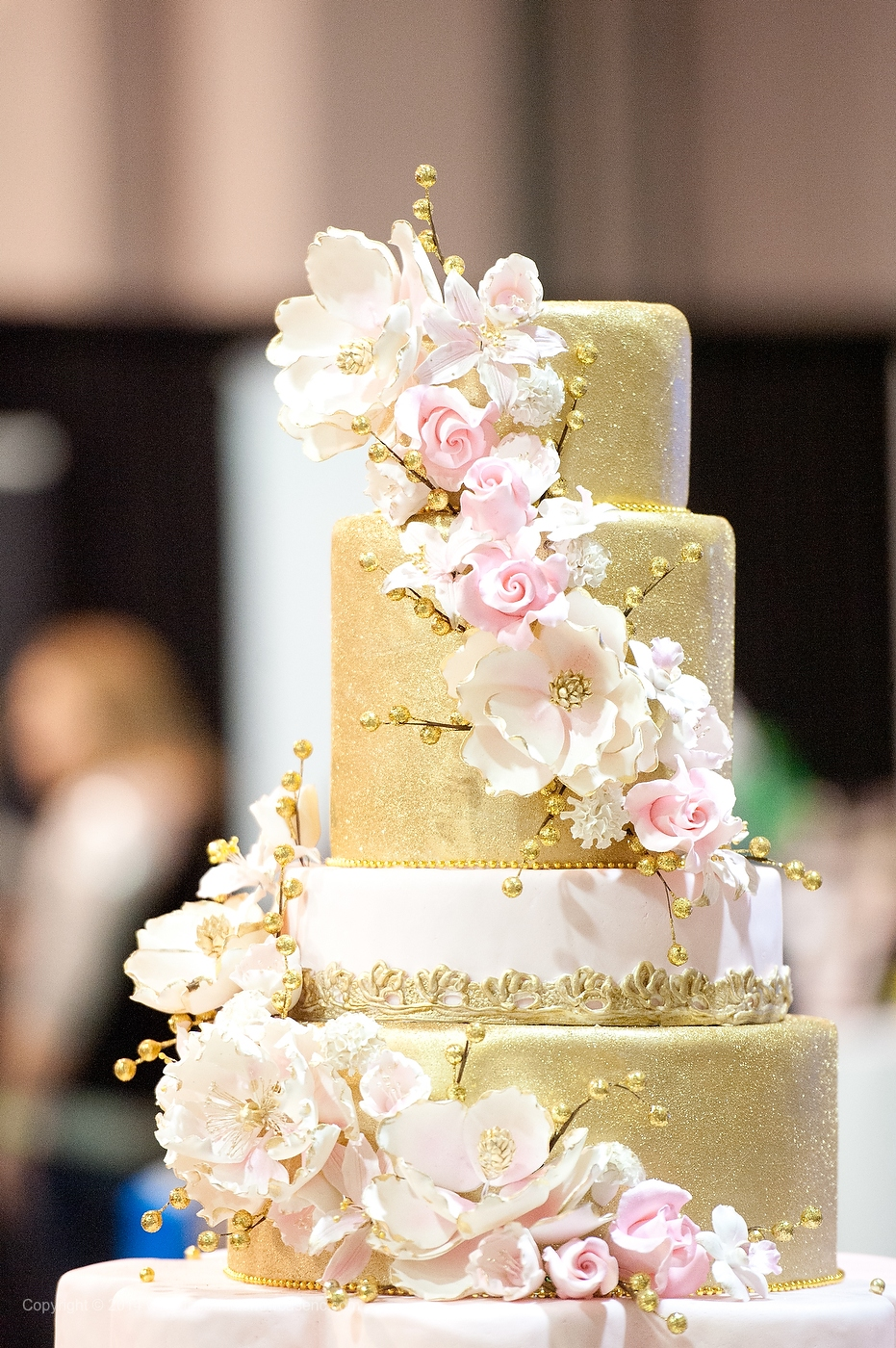 Charlotte NC Bridal Show - The Bridal Showcase — The Carolinas ...