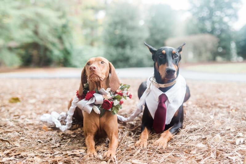 The Oaks at Salem Real Wedding_-16.jpg