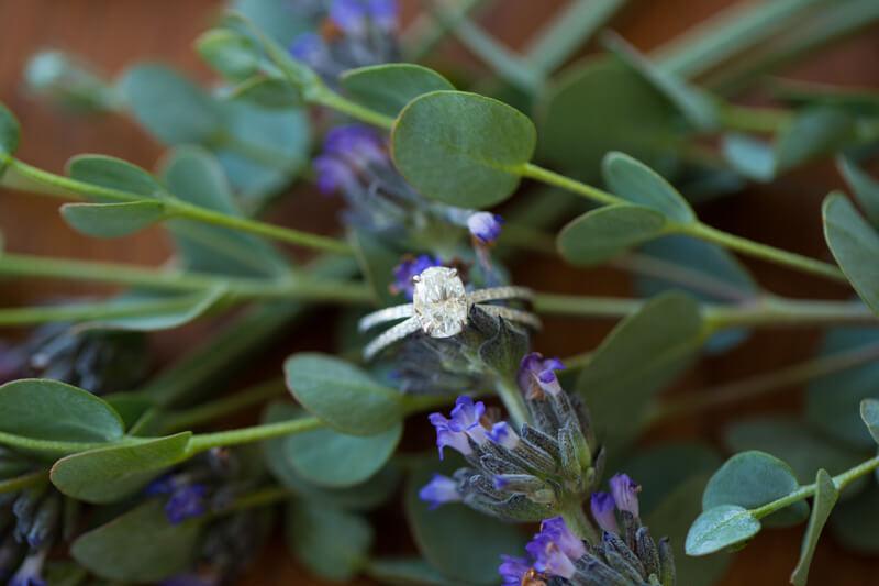 loring-magnolia-photography-charlotte-nc-2.jpg