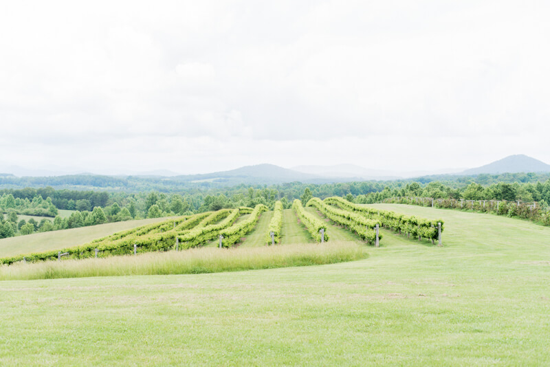 chattooga-belle-farm-wedding-3.jpg