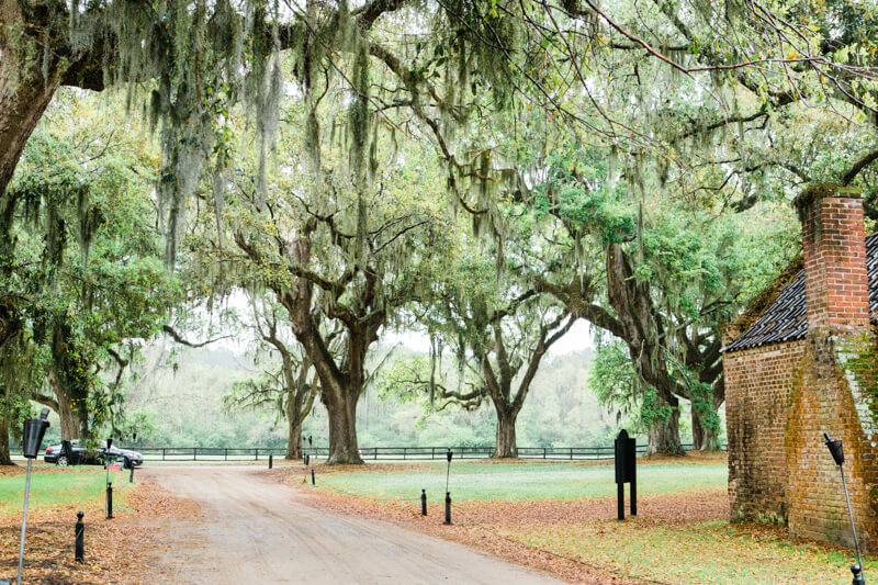 rainy-boone-hall-plantation-wedding-11.jpg