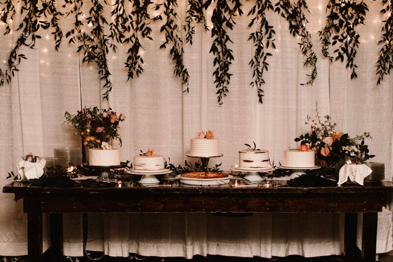 brevard-nc-mountain-wedding-24.jpg