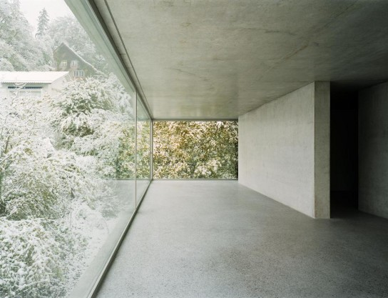 the_tree_mag-house-in-forsterstrasse-by-christian-kerez-40