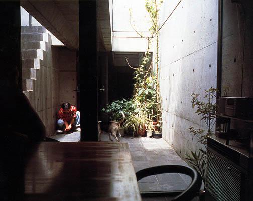 Azumahouse-courtyard