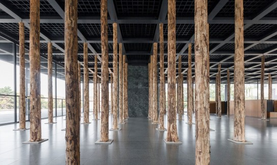 David Chipperfield . Sticks and Stones, an Intervention (4)