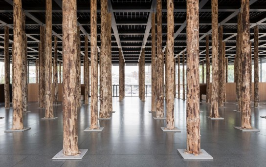 David Chipperfield . Sticks and Stones, an Intervention (5)
