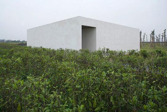 Jinhua-3979