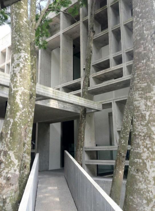 archaic_Tropical Box House::WHBC Architects019
