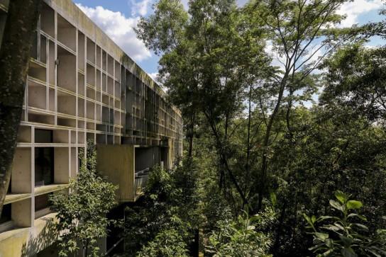 archaic_Tropical Box House::WHBC Architects05