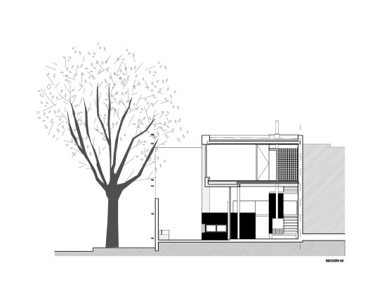 archaic_Palmar House_EstudioUZAA.025