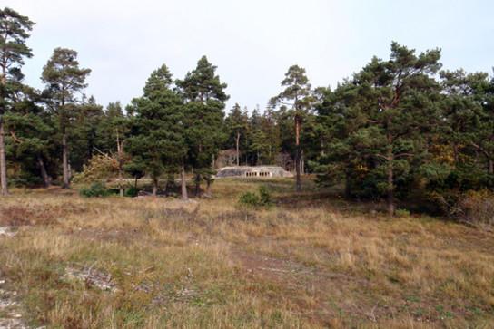 archaic_Building no. 8_Skälsö Arkitekter2