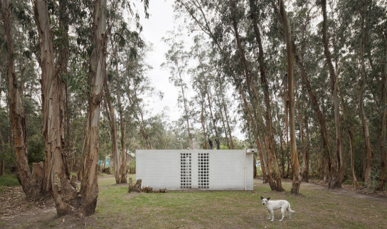 archaic_Casa de Bloques_Gualano_Gualano Arquitectos12