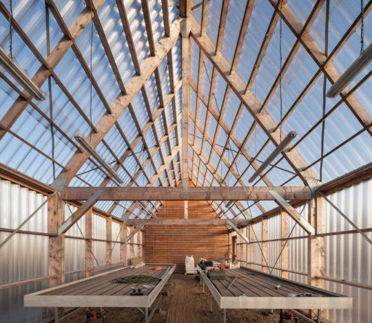 archaic_ro-ad-architecten-katja-effting-schooltuin_2-540x470.jpg