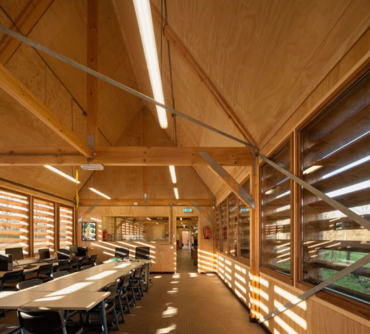 archaic_ro-ad-architecten-katja-effting-schooltuin_4-540x487.jpg