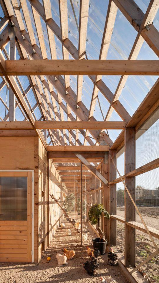 archaic_ro-ad-architecten-katja-effting-schooltuin_3-540x960.jpg