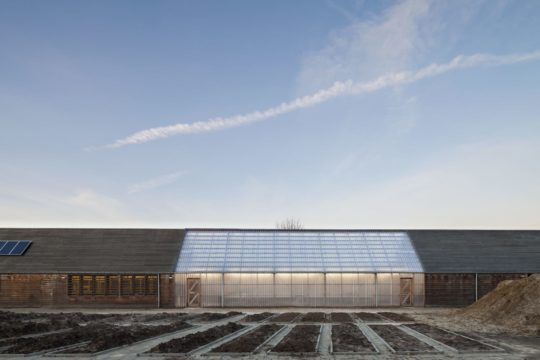archaic_ro-ad-architecten-katja-effting-schooltuin_7-540x360.jpg