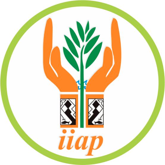 Logo IIAP 2017.png