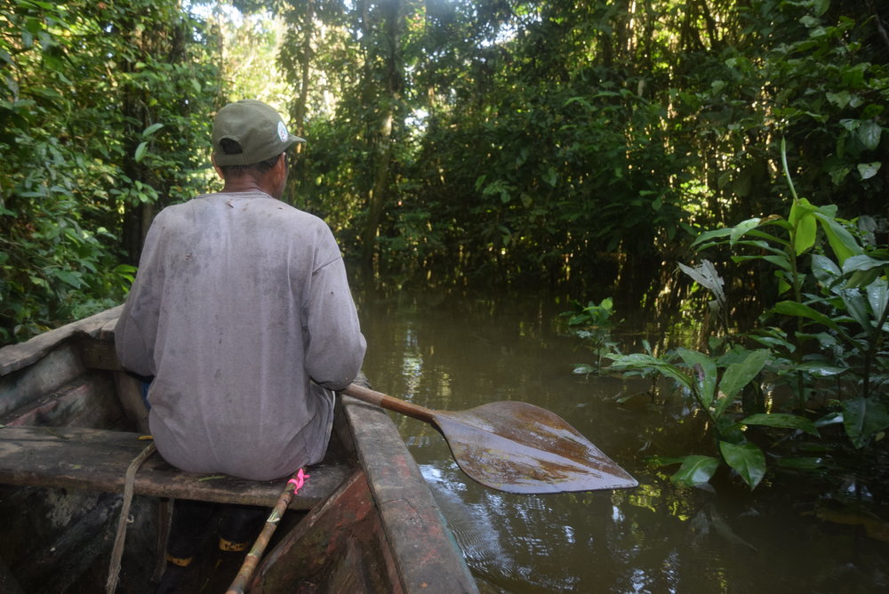 Taking the waterways to rosewood reforestation plots.