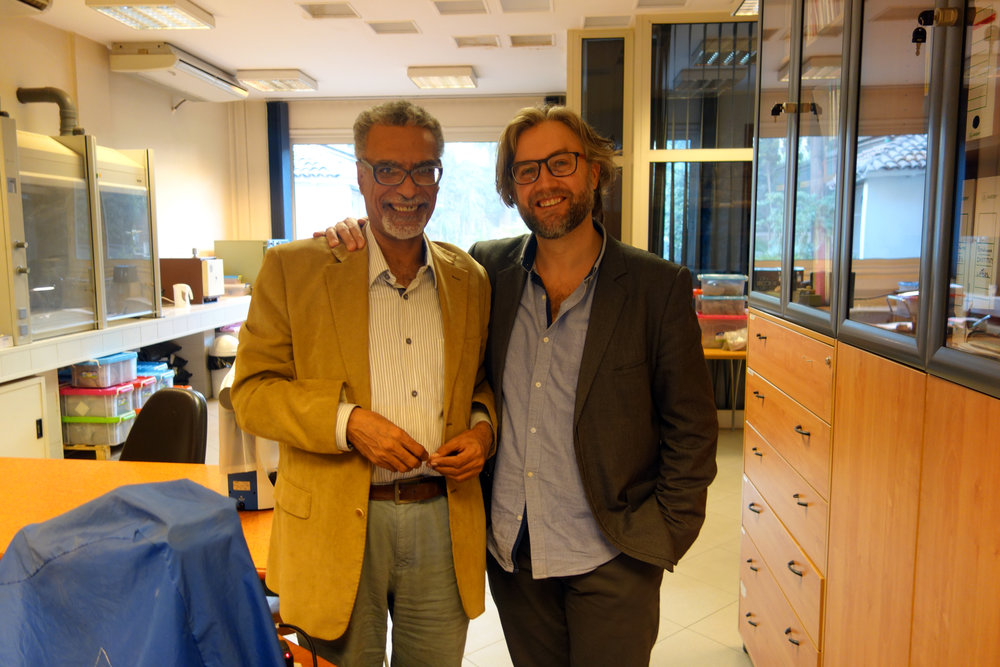 Mohamed Hamdan and Giulio Lucarini