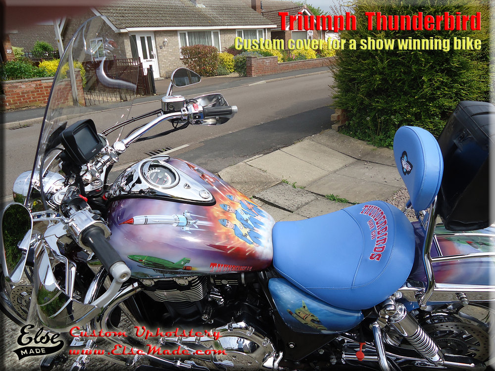 thunderbird on bike 2.jpg