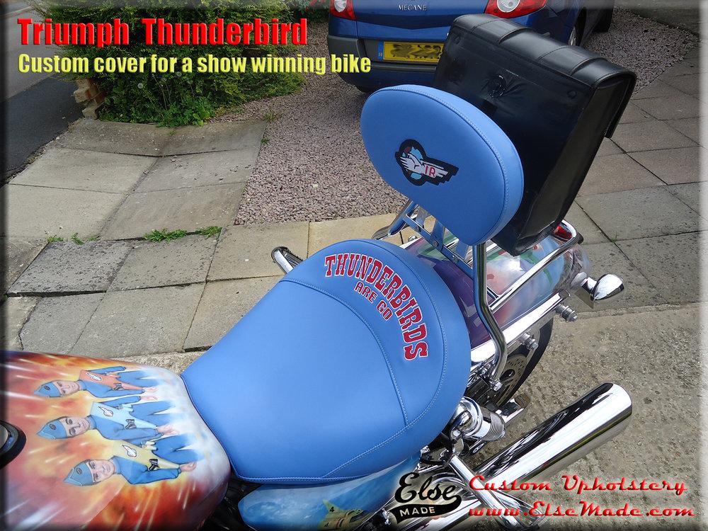 thunderbird on bike 3.jpg