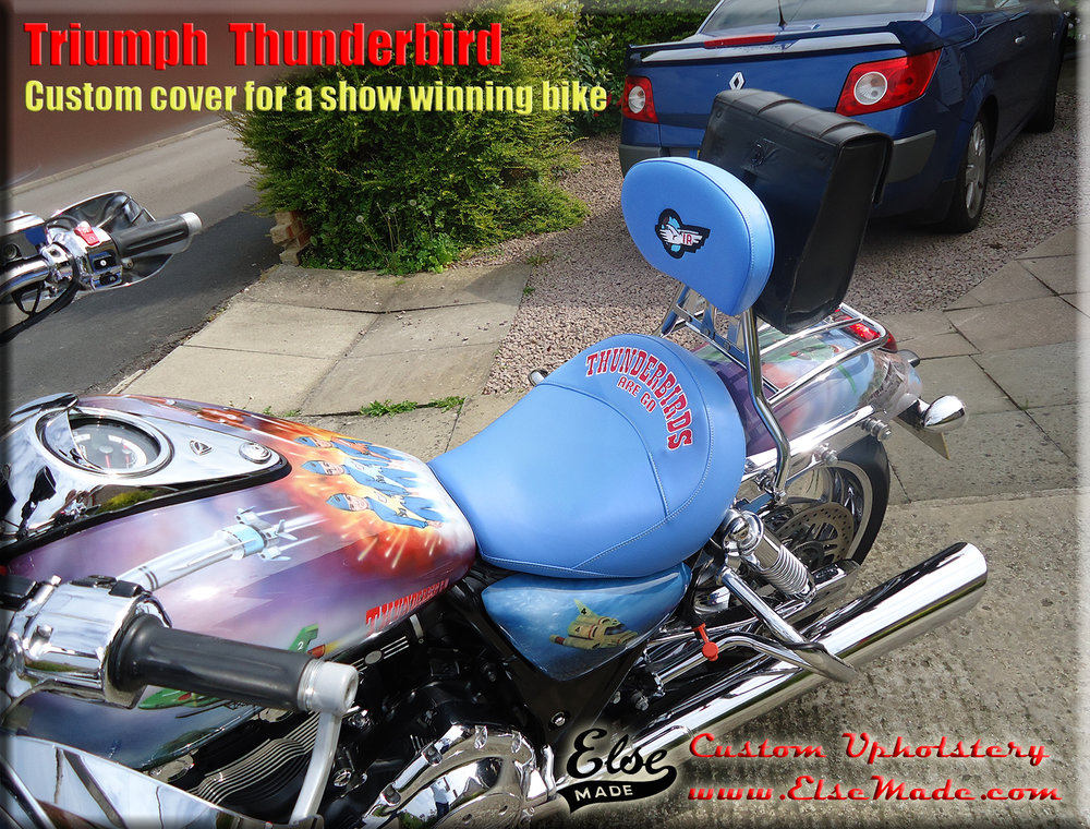 thunderbird on bike.jpg