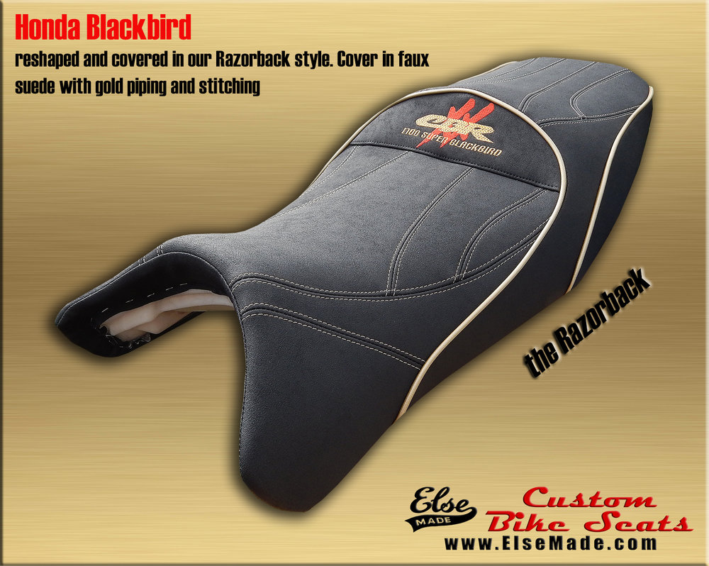 blackbird razorback 7 full size.jpg