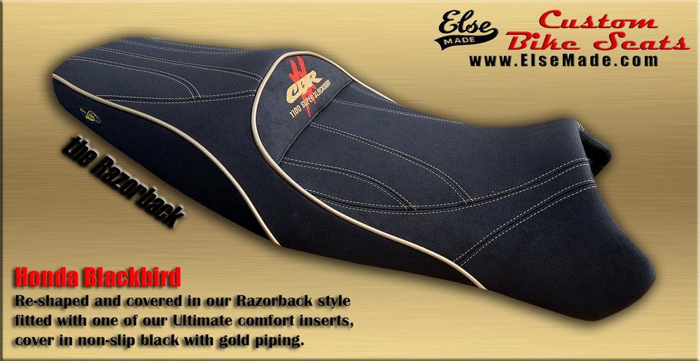 blackbird razorback 8 full size.jpg