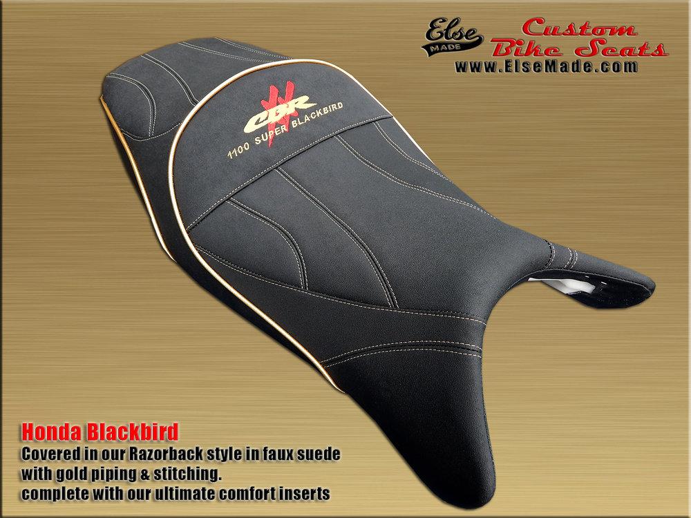 blackbird razorback 10 full size.jpg
