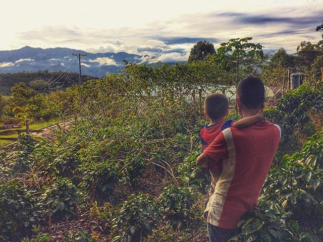 Freddy was kind enough to give us the grand tour of his farm today, and it was absolutely breathtaking.  #coffeefarmers #directtrade #vivacolombia #bluebarncoffee