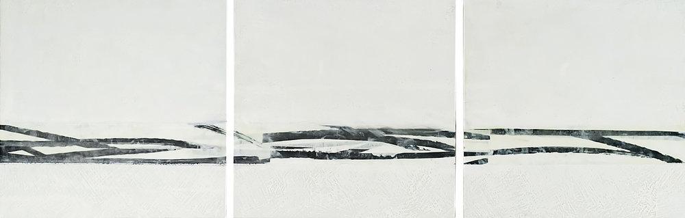 December Landscape