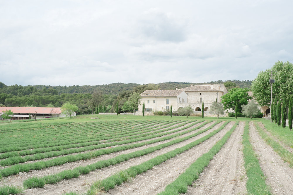 Claire Graham Photography_Provence-202.jpg