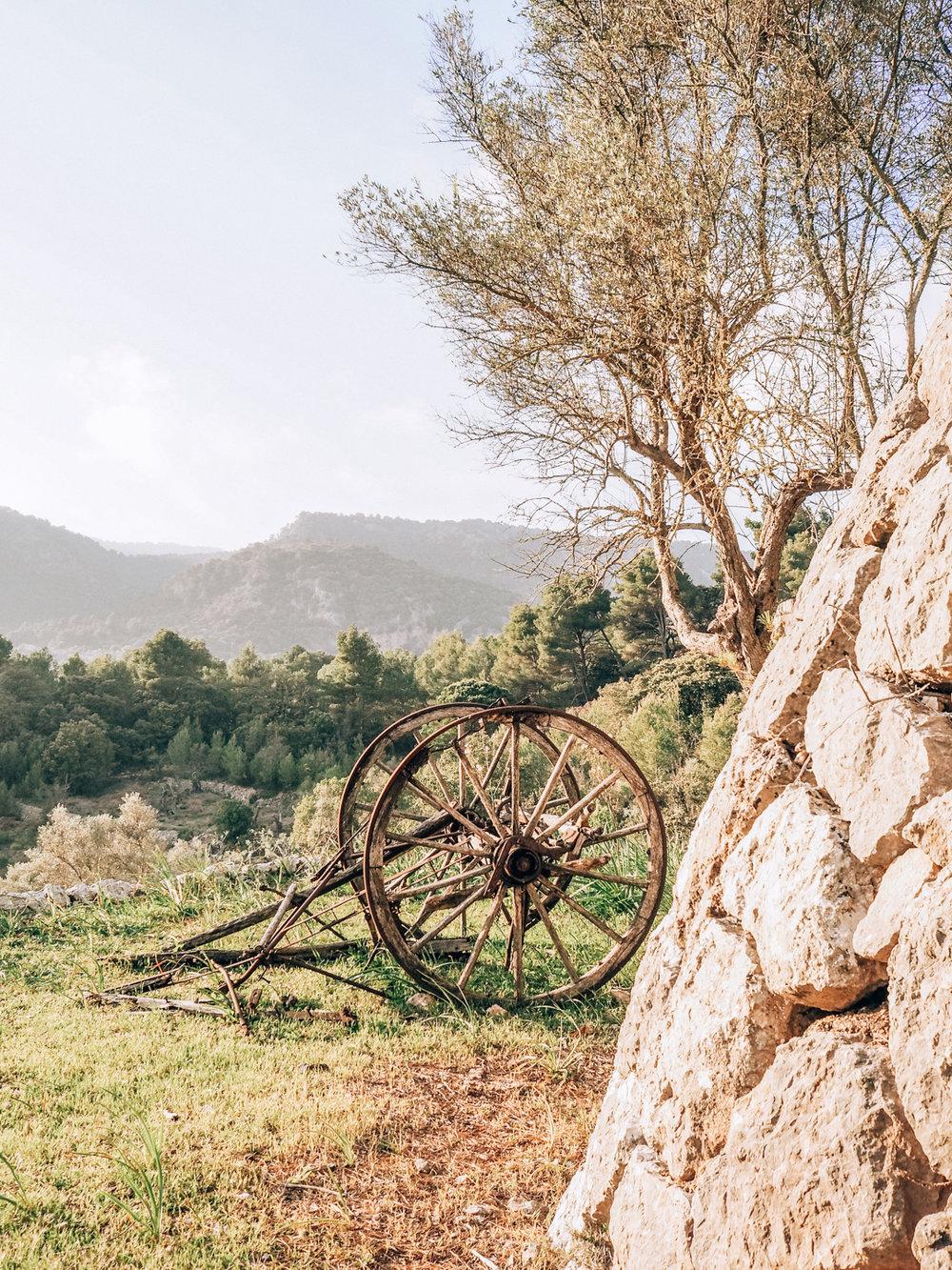 Mallorca -79.jpg
