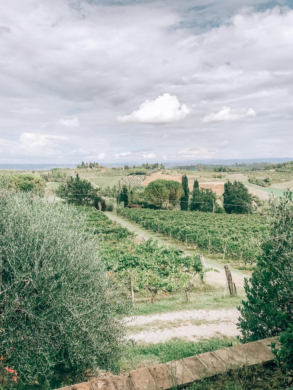 Tuscany trip - extra2.jpg