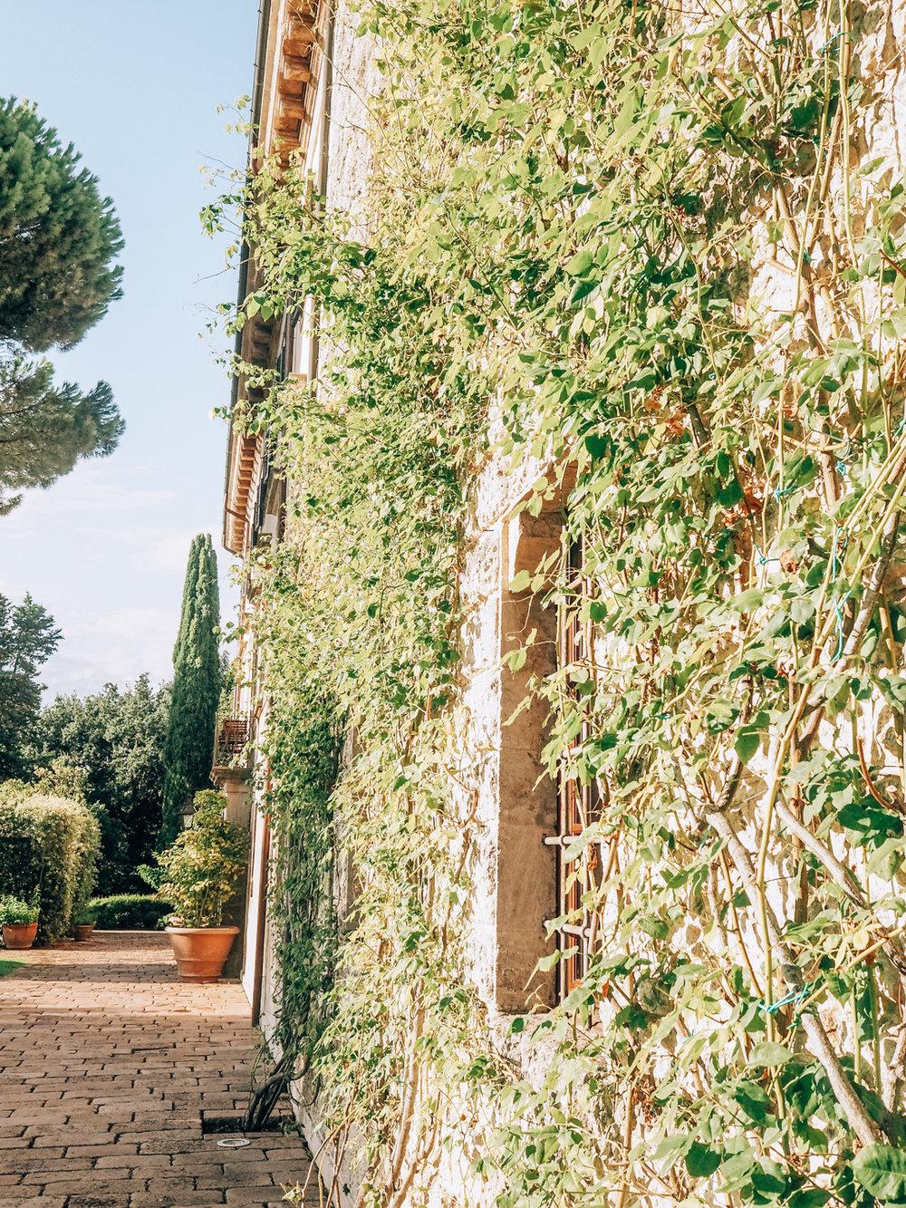 Tuscany trip-26.jpg