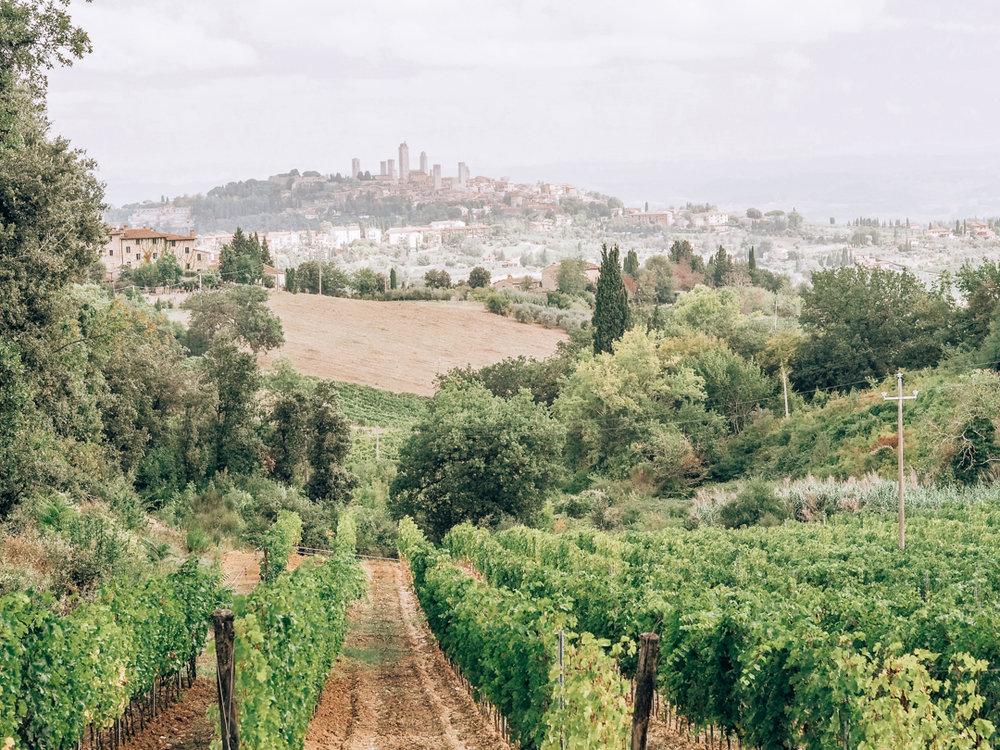 Tuscany trip-30.jpg