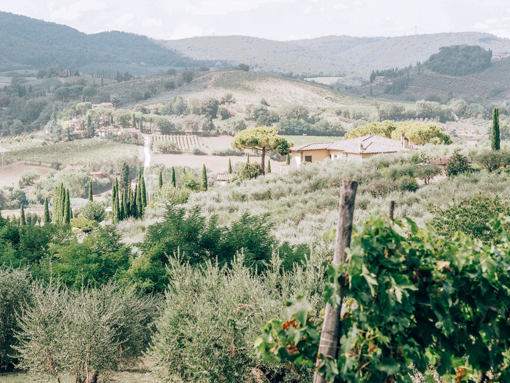 Tuscany trip-100.jpg